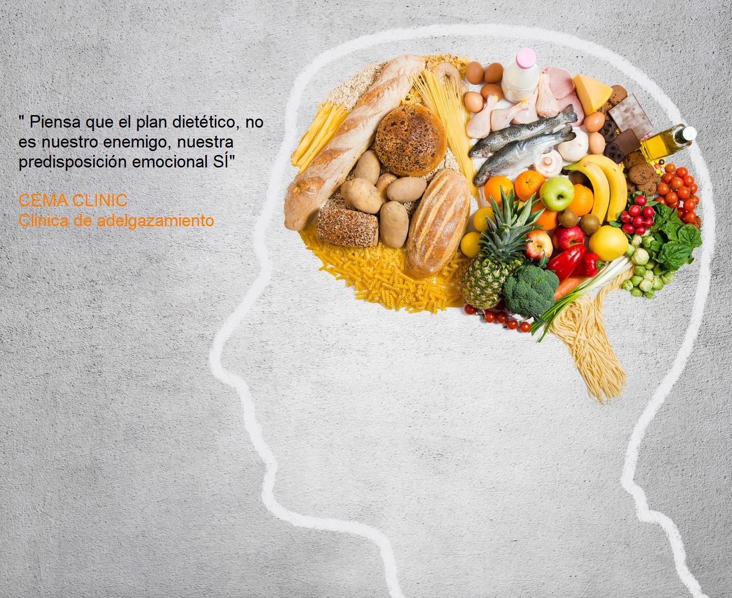 dietista nutricionista en barcelona , plan dietético